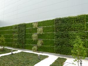 緑化工事(壁面緑化・屋上緑化)