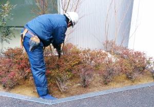 自動灌水システムの修理・交換点検や 緑化後のお手入れなどメンテナンス
