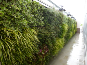 壁面緑化や屋上緑化を自動灌水にすることで水遣りしにくい場所も安定して水遣りすることできます。 また、使用する植物にや地形に合わせた自動灌水は枯れにくく、長く美しく保つことができます。