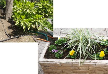 一般のご家庭での自動灌水設備の施工|・猛暑の夏や留守の時にも安心!年間通して水やりの手間か省けます。 ・無駄な水を使わず、コスト削減 ・水やりしにくい場所も楽々!
